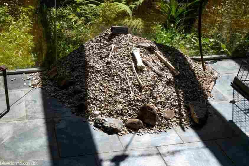 sambaquis, amontoado de conchas feitos por comunidades antigas