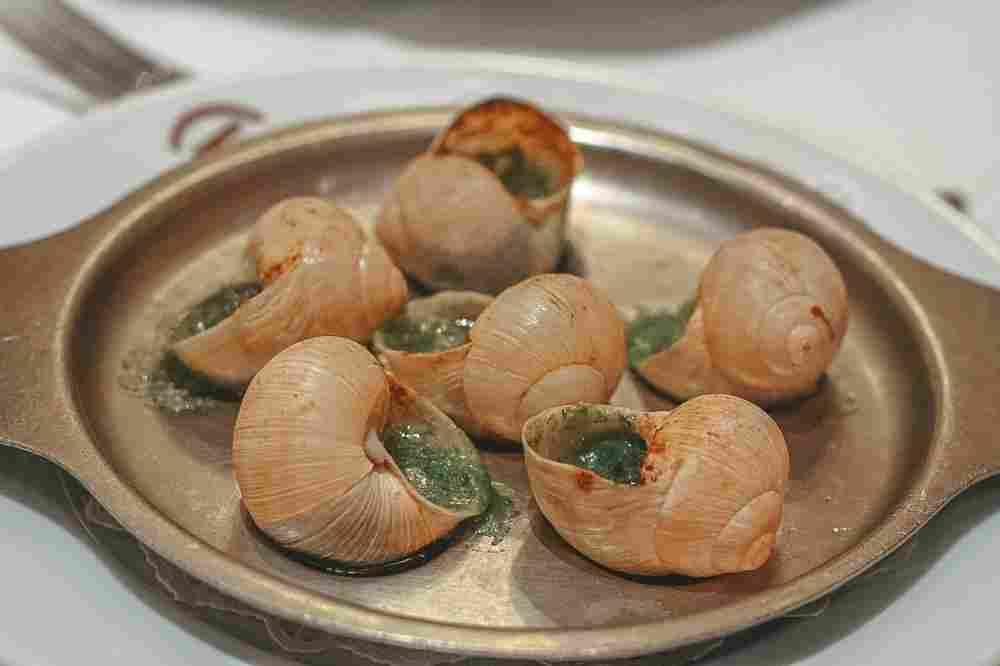 O escargot, caracol com molho de manteiga, alho e ervas, é uma tradicional iguaria francesa